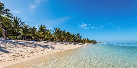 Stranden Le Morne Beach på Mauritius.