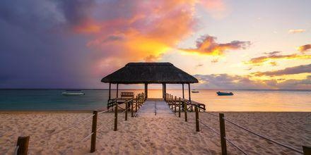 Solnedgang ved stranden Flic en flac på Mauritius.