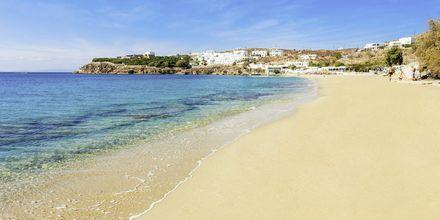 Agios Stefanos Beach på Mykonos, Hellas.