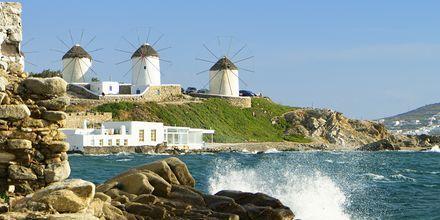 Mykonos by med de kjente vindmøllene.