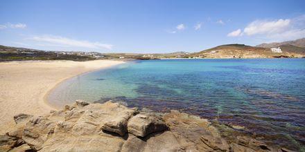 Ftelia beach på Mykonos, Hellas.