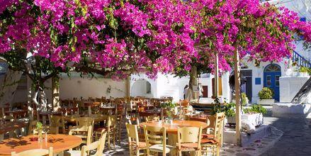 Mykonos, Hellas