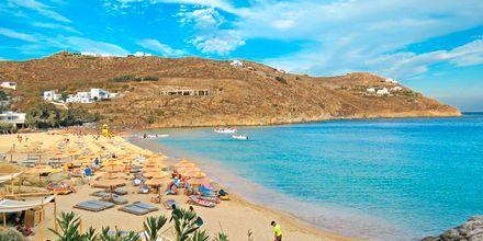 Super Paradise Beach på Mykonos, Hellas