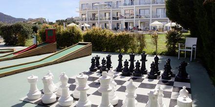 Sjakk og minigolf
