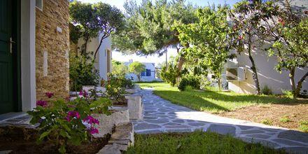 Hagen som omgir hotellet