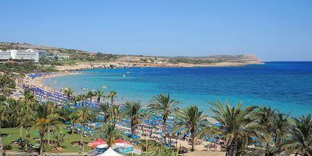 Hotell Nelia Beach i Ayia Napa