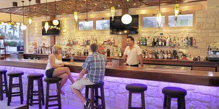 Baren på hotell Nelia Garden, Ayia Napa, Kypros