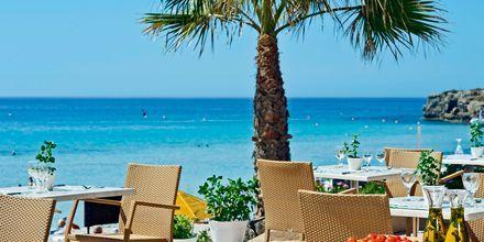 Poolbaren på Hotell Nissi Beach i Ayia Napa, Kypros.