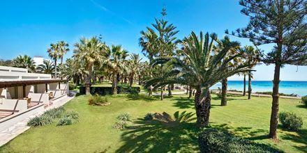 Nissi Beach i Ayia Napa på Kypros