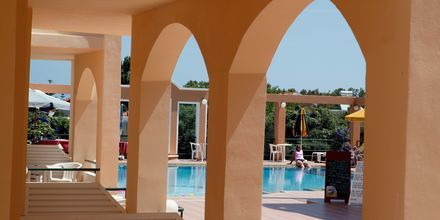Hotel Nontas i Agii Apostoli på Kreta