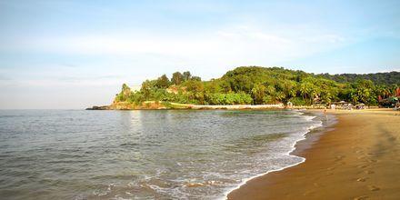 Baga Beach i Nord-Goa