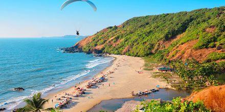 Strand i Nord-Goa