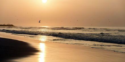Solnedgang i Salalah, Oman