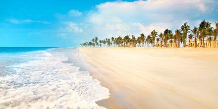 Stranden i Salalah