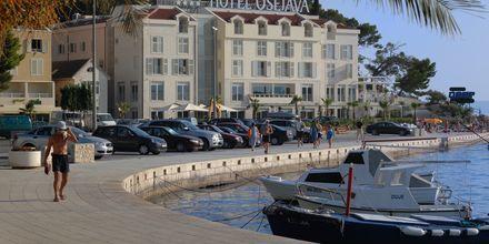 Hotel Osejava i Makarska i Kroatia
