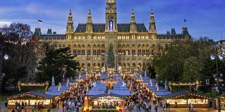 Julemarkedene i Wien er svært populære. Turister fra hele verden kommer for å oppleve dette.