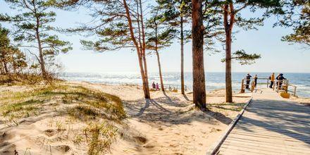 Palangas strand er flere kilometer lang.
