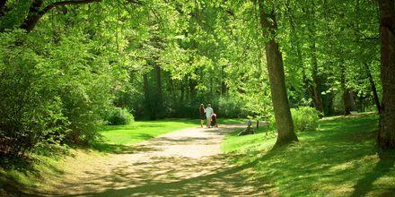 Park i Palanga, Litauen.