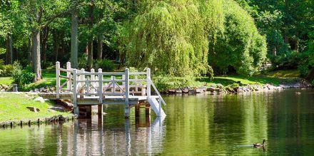 Botanisk park i Palanga, Litauen.