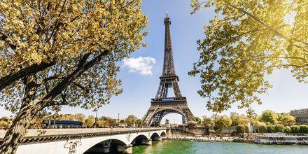 Høst i Paris, finnes det noe mer romantisk.