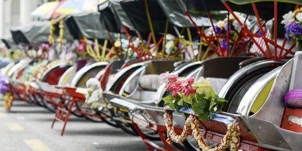 Sykkeldrosje er fortsatt en vanlig variant for transport i George Town. Den ene mer pyntet enn den andre.