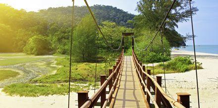 Det er mange naturopplevelser i Penang. Her fra nasjonalparken på øya.