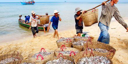 Lokale fiskere i arbeid