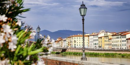 Pisa i Toscana, Italia