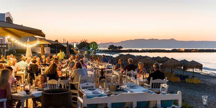 I Platanias ligger den populære restauranten Olive Tree med utsikt over havet