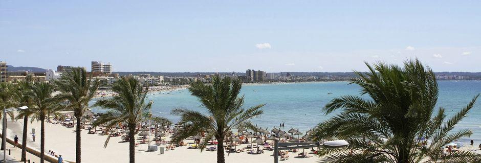 Stranden i Ca'n Pastilla