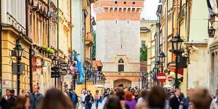 Gamlebyen i Krakow.