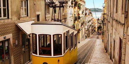 Trikken som går gjennom sjarmerende Alfama i Lisboa