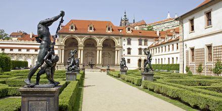 Slottsparken i Praha, Tsjekkia.