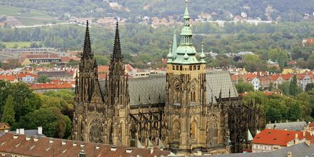 St. Vitus Katedralen – et viktig landemerke i Praha, Tsjekkia.