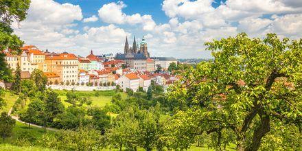 Praha, Tsjekkia.