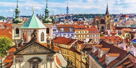 Utsikt over Gamlebyen i Praha