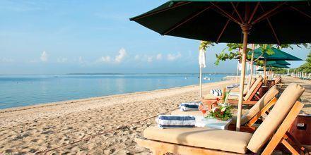 Stranden ved Hotel Sanur Beach