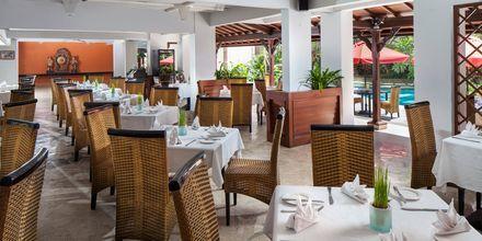 Café Komodo Alfresco Dining