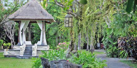 Hagen rundt Puri Santrian i Sanur på Bali