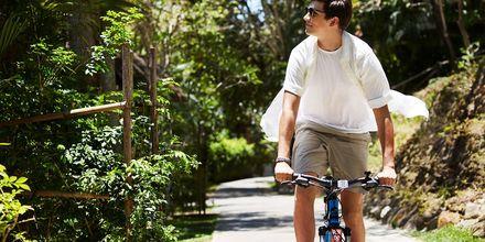 Opplev omgivelsene på sykkel