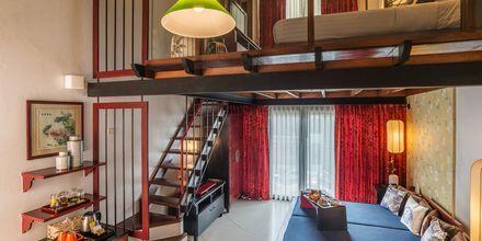 Toroms suite