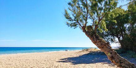 Rethymnonkysten