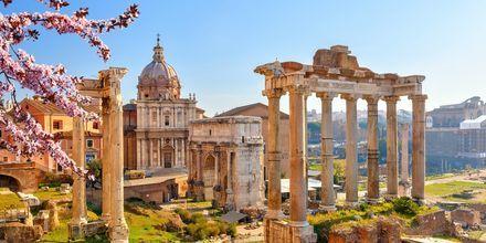 Forum Romanum i Roma, Italia.