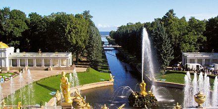 Tsarens sommerpalass Peterhof utenfor St. Petersburg