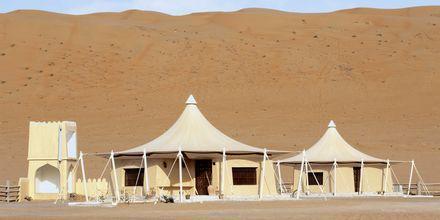 Beduintelt i ørkenen, Oman