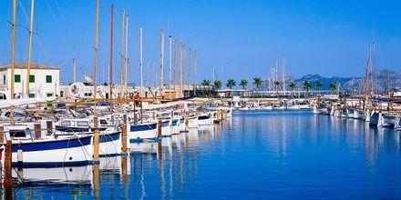 Marinaen i Santa Ponsa på Mallorca