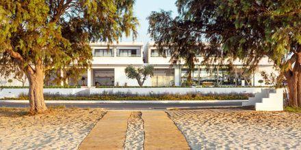Stranda ved hotellet