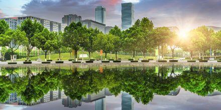 Vegetasjon og moderne skyskrapere samles i Shanghai.