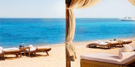 Hotellets strand