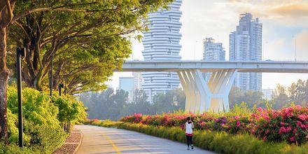 Nyt vegetasjon og moderne arkitektur samtidig i Singapore.